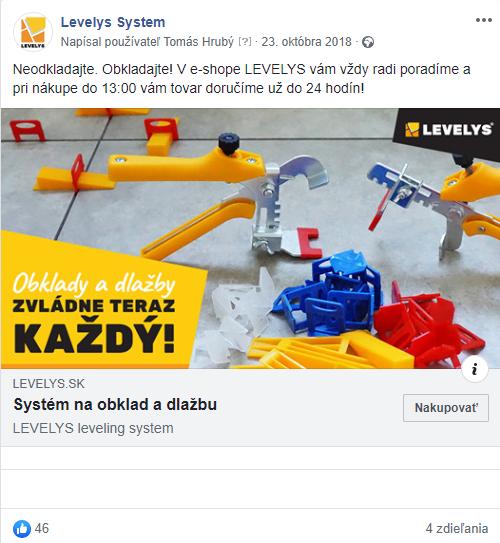 levelys case study